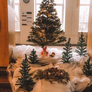 Klusus un gaišām domām piepildītus Ziemassvētkus un laimīgi veselīgu Jauno gadu!
